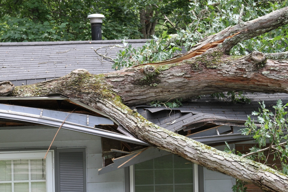 Storm damage roof repair company in Arizona